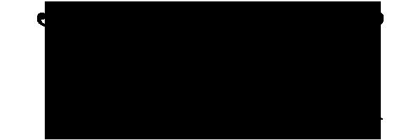 Tina Saalwaechter Logo